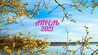 Экспресс Таро прогноз на Апрель 2021  для всех знаков Зодиака (Астрологический Оракул Симболон)