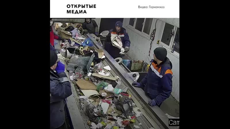 В Ульяновске живого кота выбросили в мусор Его спасли в последний момент