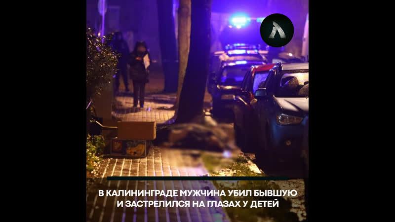 В Калининграде муж убил бывшую жену и покончил жизнь самоубийством АКУЛА