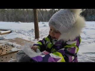 "Катя Лысенко. Акция ""Покормите птиц зимой"""
