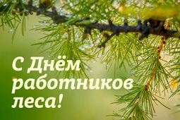 Руководители Липецкой области поздравили работников лесного хозяйства региона и ветеранов отрасли с профессиональным праздником