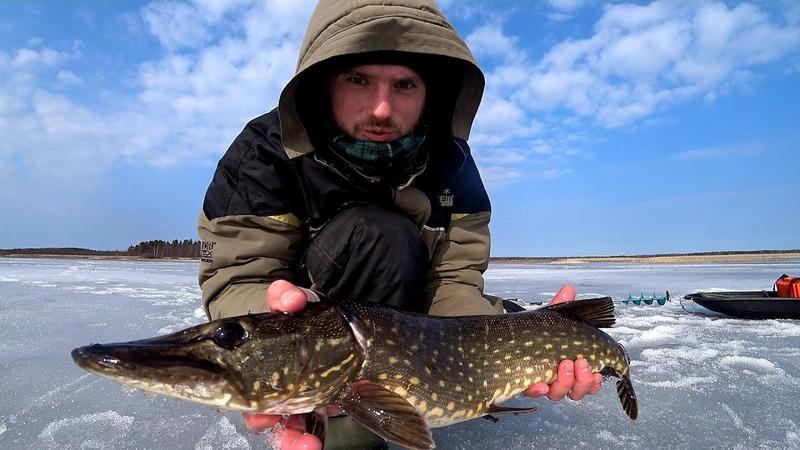 ЗАКРЫЛ СЕЗОН ПО ЩУКЕ Нашли рыбу у промоин