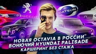 Новая Skoda Octavia в России | Вонючий Hyundai Palisade | В каршеринг без стажа
