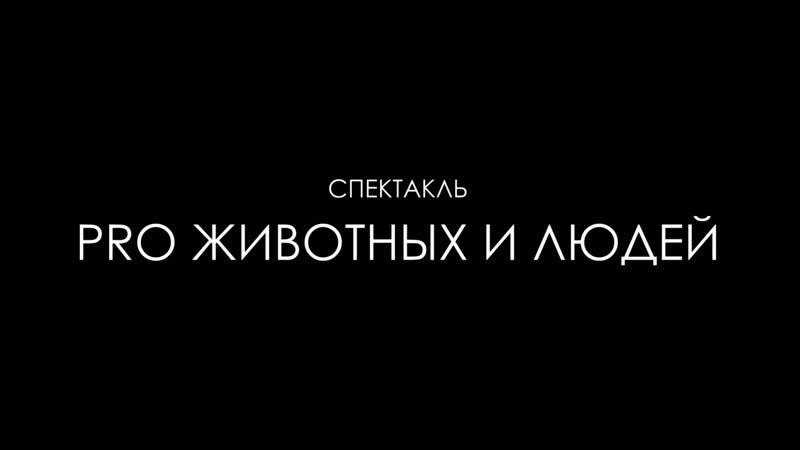 Тизер спектакля PRO ЖИВОТНЫХ И ЛЮДЕЙ PROТЕАТР