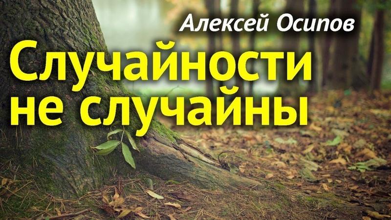 СЛУЧАЙНОСТЕЙ в нашей жизни НЕТ Законы КАРМЫ и СУДЬБА человека Всё к лучшему Осипов Алексей Ильич