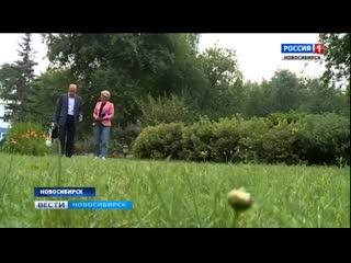 Родственники погибшего в Воронеже красноармейца рассказали историю семьи