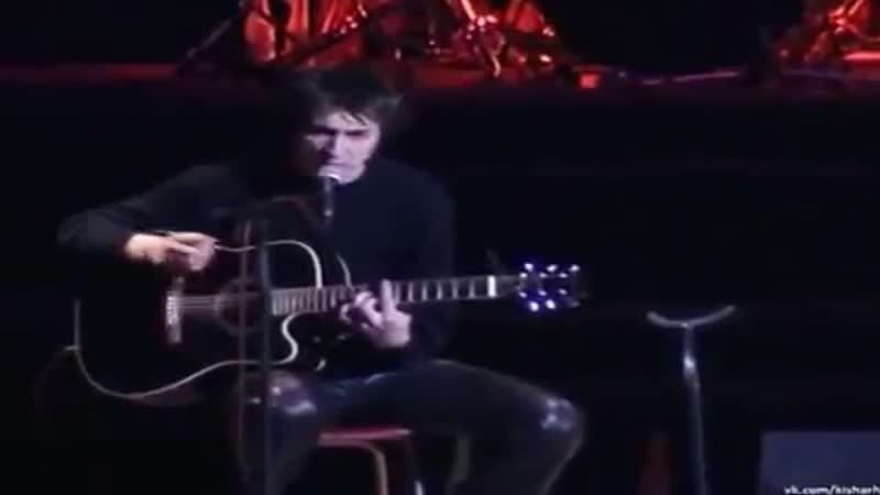 Король и Шут, АКУСТИКА (РАРИТЕТ) Концерт в ДК Ленсовета 1998