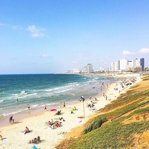 Ростов-на-Дону: ПРЯМЫЕ рейсы в Тель-Авив за 9000 рублей туда-обратно зимой-весной