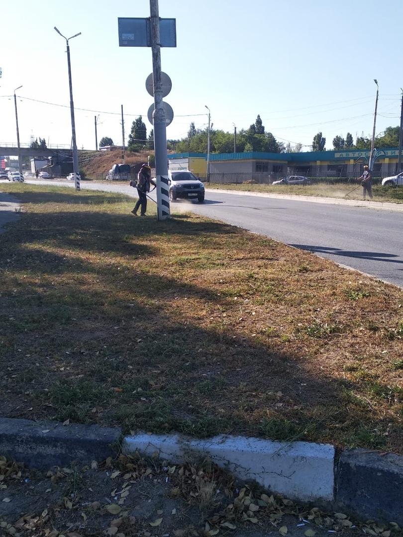 В Таганроге МКУ «Благоустройство» производит покос травы и сорной растительности