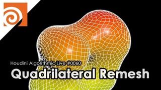 Houdini Algorithmic Live #060 - Quadrilateral Remesh