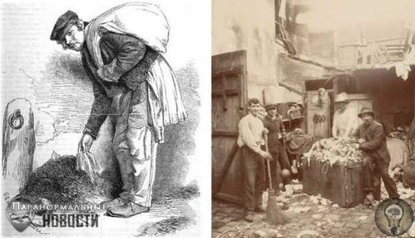 Лондонские истории об огромной черной свинье-людоеде, жившей в канализации До сих пор неизвестно, была ли это обычная свинья, заплутавшая в подземных туннелях или иной монстр, лишь похожий с