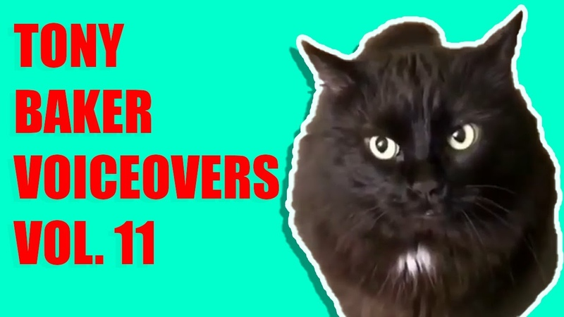 Tony Baker Compilation Cat Edition 2 IACT Volume 11