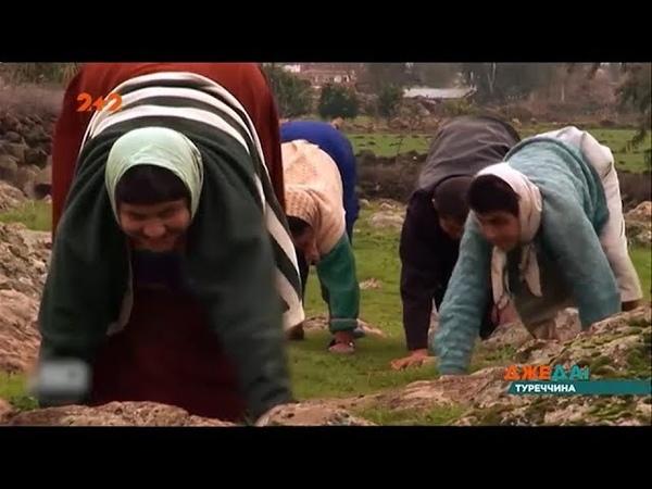 Зворотна еволюція людства в турецькій родині діти ходять на чьотирьох