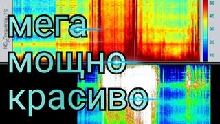 Мощные всплески в Томске и Харькове обзор Графиков Резонанса Шумана из разных стран