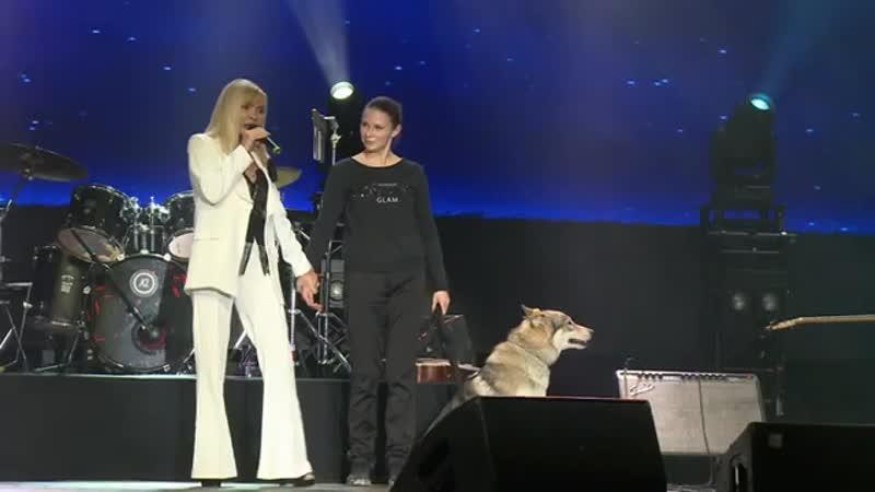 Татьяна Тишинская Волчица