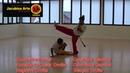 Primeira e segunda Sequencia de Mestre Bimba Capoeira Regional