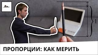 Как мерить карандашом пропорции в рисунке