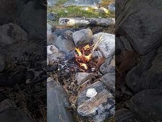 #13 КОСТРЫ в Карелии. Пламя Любви и Тепла в моей жизни ✿ Нильмогуба, Белое море 2021