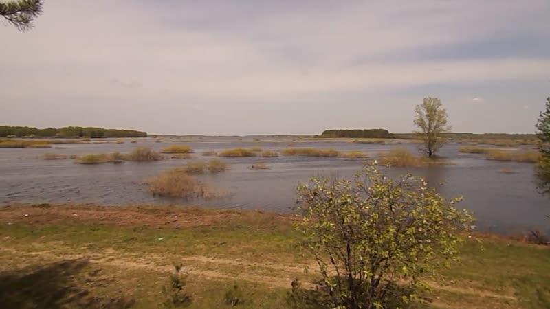 май2013 Разлив на р Тырница Вид на Вертский городок