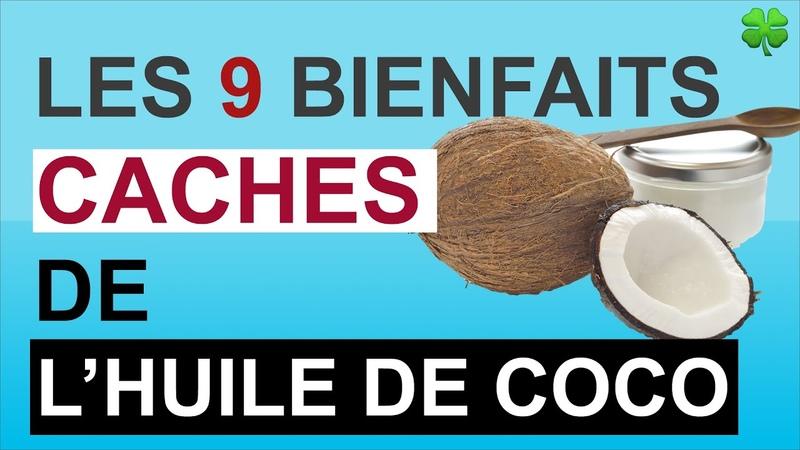 Huile de coco Ses 9 bienfaits cachés pour les cheveux, la peau, les dents et la santé
