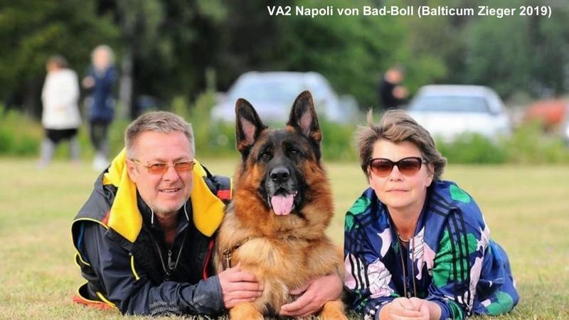 VA2 Napoli von Bad Boll Balticum Zieger 2019
