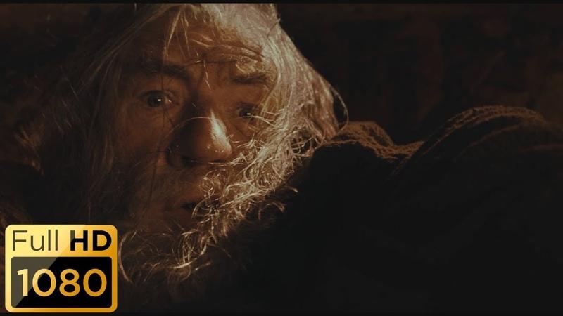 Ты не пройдешь Гэндальф падает в пропасть Бегите глупцы Властелин колец Братство кольца