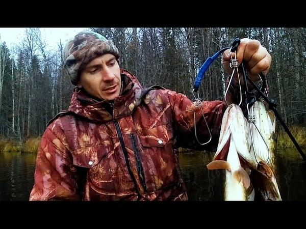 16 октября Хмурый день в Костромской тайге Щуки на блесну Клюква Унженских болот Утро на реке