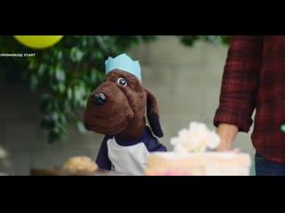 Пёс Аллан (2020) Allan the Dog