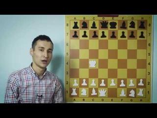 Название шахматных фигур - онлайн обучение по шахматам