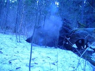 2 грамма ГМТД HMTD и почва на корнях дерева битрейт 480 perm ** 04 2011