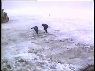 ДТ-30П Витязь. Антарктида, 1994 год