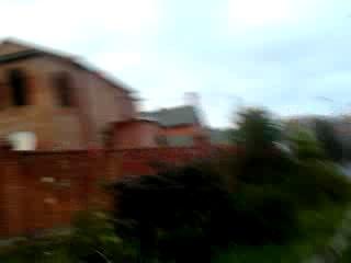 #1 Видео как мы гуляем возле котеджов! / Video as we walk near the cottage!