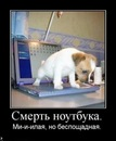 Фотоальбом Андрея Николюка