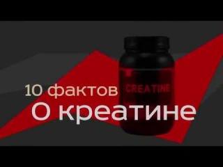 Креатин (Метил-гуанидо-уксусная кислота). 10 фактов