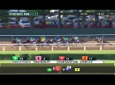 2015 Belmont Stakes G1