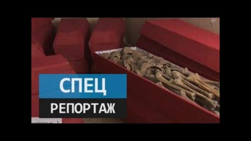 Живые и мертвые 2 часть Специальный репортаж Дениса Арапова