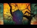 Merkaba Treeverb Visualization