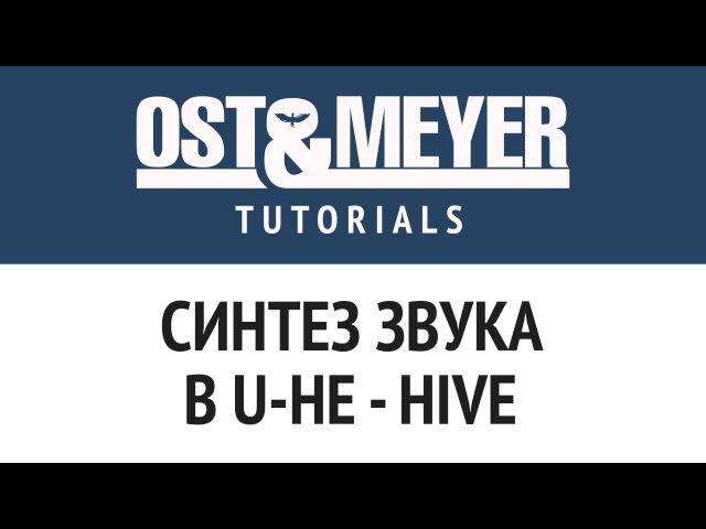 Ost Meyer Tutorials Синтез звука в U-He - Hive