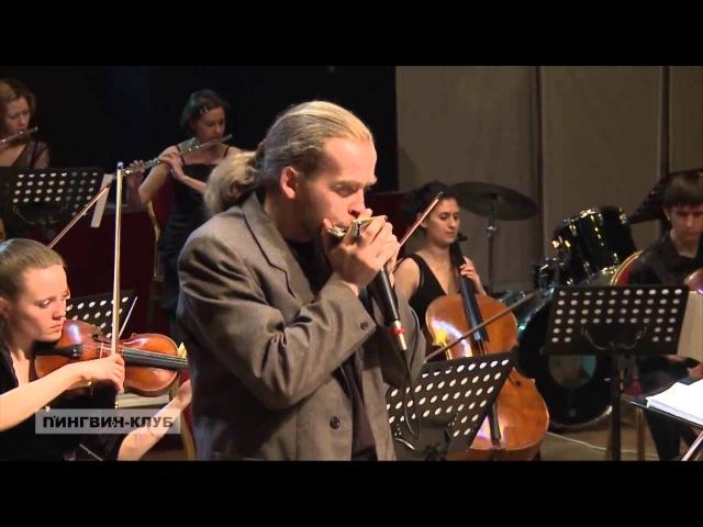 Diatonic harmonica and chamber orchestra губная гармошка и камерный оркестр