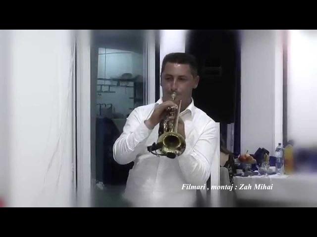 Traila Domilescu la trompeta Maria Draghicescu - Salcuta cu creanga-n apa