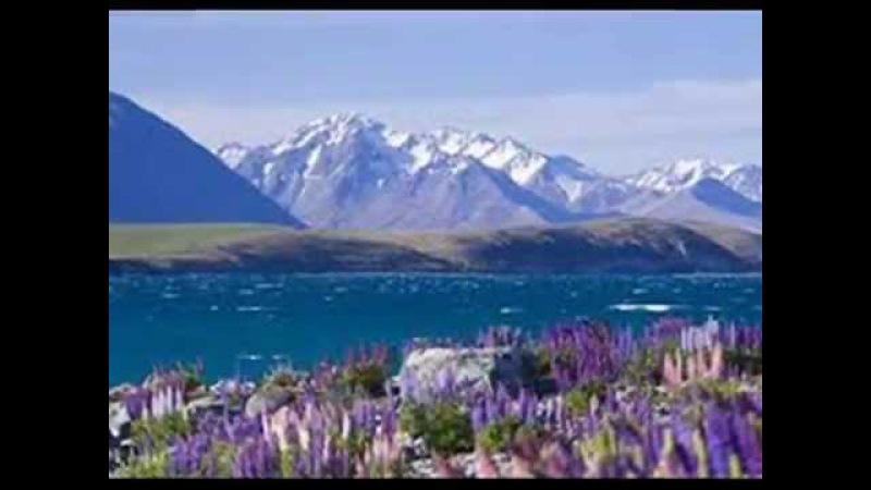 Lake Tekapo and Lupins New Zealand музыка флейта и арфа