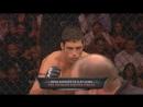 MMA VINES ll By RaZoR