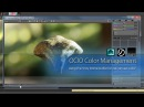 OCIO LUT Color Management in Vray for Maya