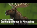 Live Stream It's MOOSE DAY Drawing A Moose