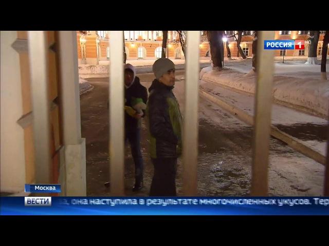 В Москве охранные собаки растерзали пенсионерку сотрудник ЧОПа задержан