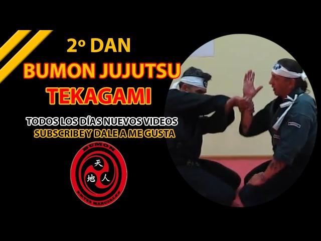 2º Dan aikijutsu Tekagami Daito Ryu Hakko Ryu Bumon Jujutsu