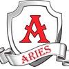 Юридическая помощь Aries