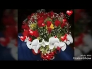 Video-83af0a174e727303a1185e3cf399186a-V.mp4