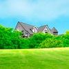 Рулонные газоны крупным оптом и в розницу