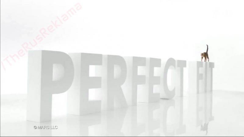 Реклама Perfect Fit 2015  - 1000 Мышей (Кот Боярского)